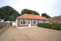 2 bed Semi-Detached Bungalow in Thorpe St Andrew...