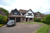 5 bed Detached house in Thorpe End, Norwich, NR13