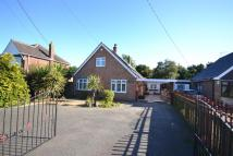 Detached Bungalow in Rackheath, Norwich, NR13