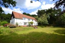 Detached property to rent in Mundesley, Norwich, NR11