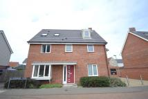 Detached house to rent in Queens Hills, Costessey...