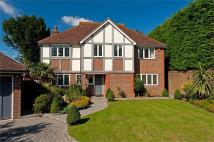 Detached property for sale in The Spinney, HOVE