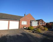 Detached Bungalow for sale in Meadow Close, Holt