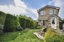2 bed Detached house in Limewood Close...