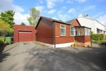 Detached Bungalow for sale in Cliffe Lane...