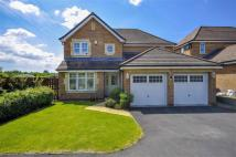 4 bedroom Detached house for sale in Daisy Hill Court...
