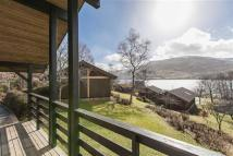 21 bed Detached home in Lochside Lodges...