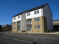 Cassillis Road new Apartment to rent