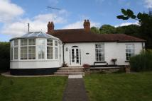 Detached Bungalow for sale in Stoke Prior