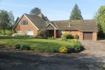 Detached Bungalow in NR BREDENBURY