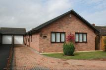 Detached Bungalow for sale in Ross-on-Wye