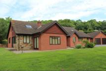 Fownhope Detached Bungalow for sale