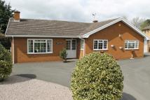 4 bedroom Detached Bungalow in WHITESTONE