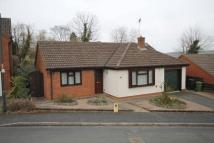 Detached Bungalow to rent in Stonehill Drive, Bromyard