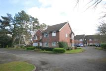 2 bed Flat to rent in Trimmers Field, Farnham...