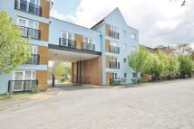 Flat to rent in Parsons Close, Aldershot...