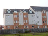 2 bed Apartment in Avondale Grove...