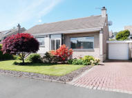3 bed Detached Bungalow in Cherrytree Place...