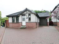 2 bed Detached Bungalow for sale in Alwyn Drive...