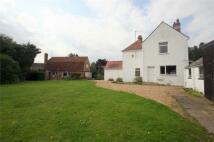 6 bed Detached house in Lexden Road...
