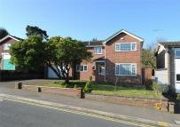 Detached property for sale in Oaks Drive, COLCHESTER...