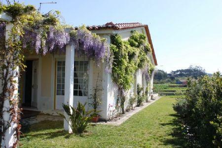 Image 1, 4 Bedroomed Villa : AV751