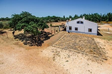 Image 9, 3 Bedroomed House : GV330