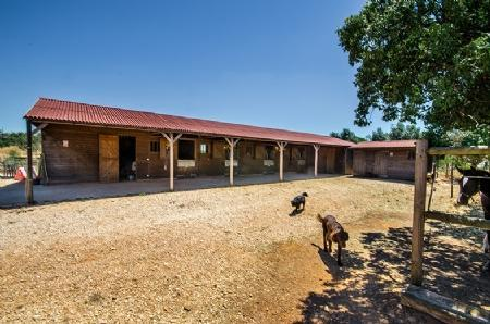 Image 14, 3 Bedroomed House : GV330