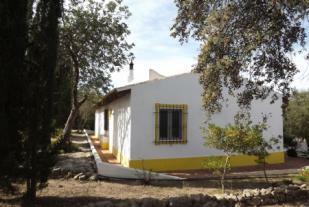 Image 32, 3 Bedroomed Villa : JV1568