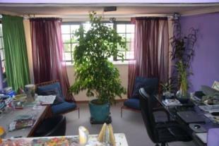 Image 5, 5 Bedroomed Villa : GV066