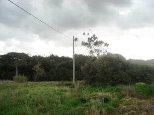 Image 1,  Plot : AP130