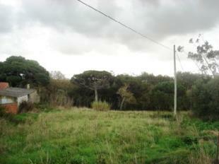 Image 2,  Plot : AP130
