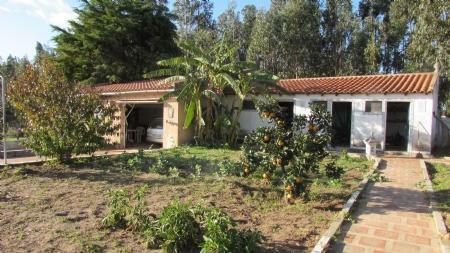 Image 2, 4 Bedroomed Villa : AV1420