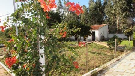 Image 14, 4 Bedroomed Villa : AV1420