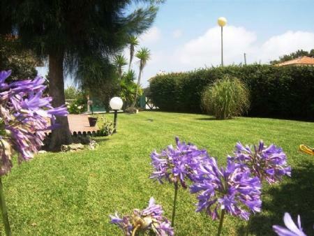 Image 13, 4 Bedroomed Villa : AV1493