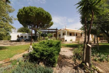 Image 32, 5 Bedroomed Villa : JV1739