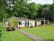 Detached Bungalow in Tatsfield