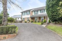 6 bedroom house to rent in Copse hill