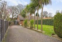 Bungalow for sale in Haven Close, Wimbledon...
