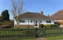 Detached Bungalow for sale in Powdermills, Leigh