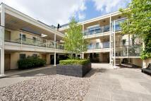 Islington Apartment to rent