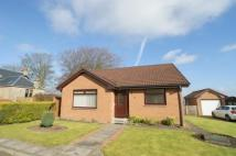 Detached Bungalow for sale in Manse Court, Law, CARLUKE