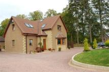 4 bed Detached house in Sunnyside, Culloden Moor...