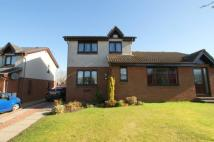 3 bedroom semi detached house for sale in Golf Gardens, LARKHALL