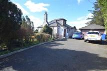 Clunch Road Bungalow for sale