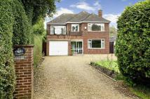 3 bed Detached house in Harborough Road North...