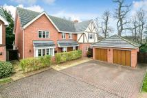 5 bedroom Detached house for sale in Kensington Gate...