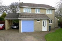4 bed Detached home in White Knowle Park...