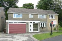 Detached property for sale in Alder Grove, Buxton...