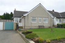 Detached Bungalow for sale in Ecclesbourne Drive...